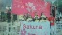 sakura吹舞輝